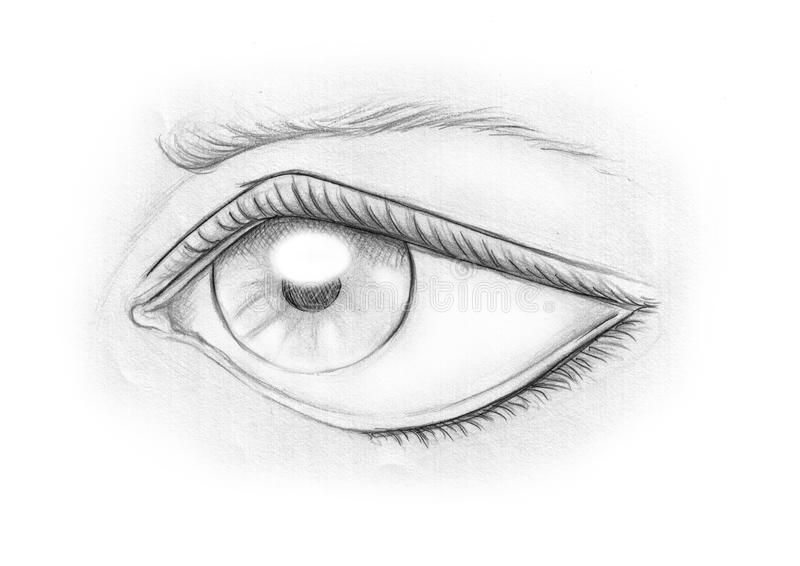 Download Olho em preto e branco ilustração stock. Ilustração de sobrancelha - 10068340