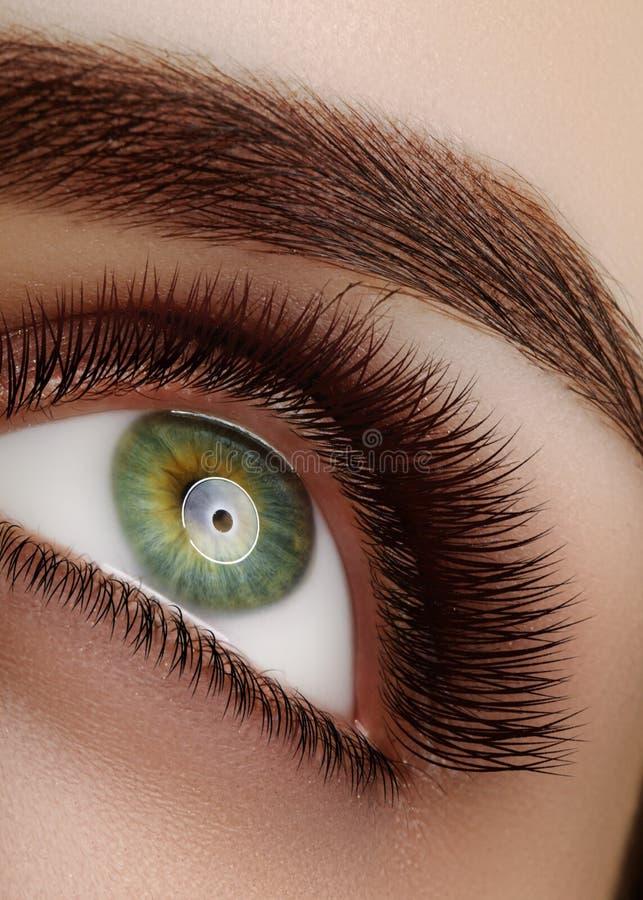 Olho fêmea bonito macro do close-up com as pestanas longas extremas Projeto do chicote, chicotes naturais da saúde Limpe a visão fotografia de stock