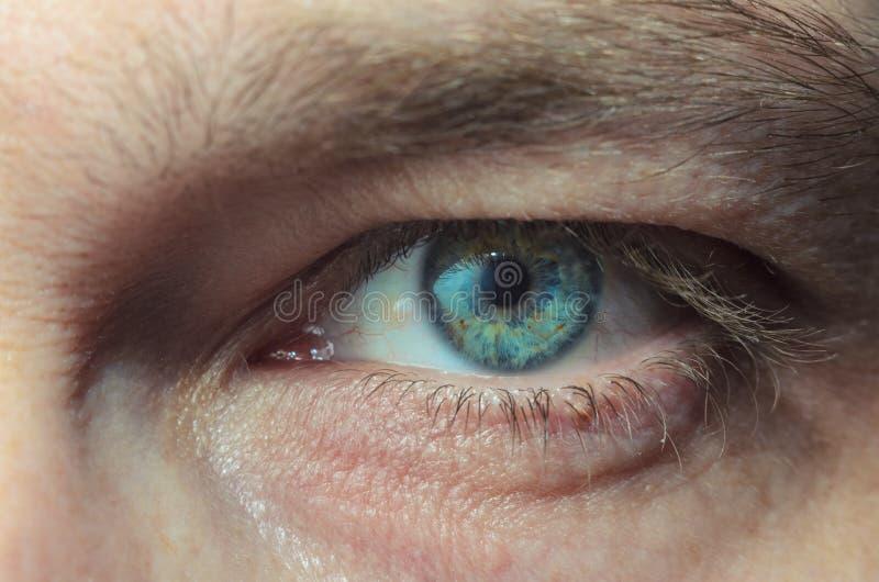 Olho humano fotos de stock