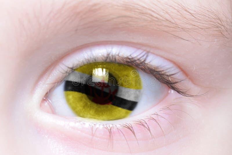 Olho humano com a bandeira nacional de brunei fotografia de stock royalty free