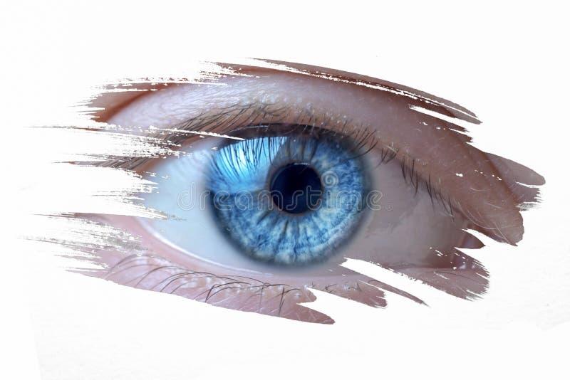 Olho humano no fundo branco imagens de stock royalty free