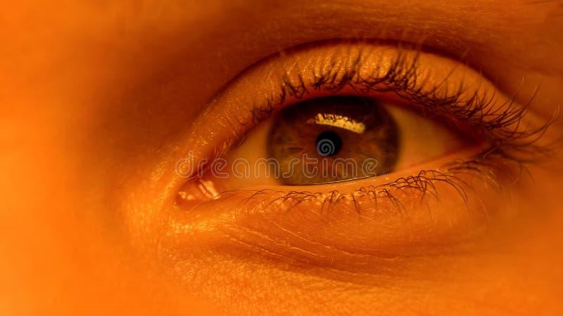 Olho humano que olha na c?mera, enrugamentos, processo de envelhecimento, close-up extremo fotos de stock royalty free