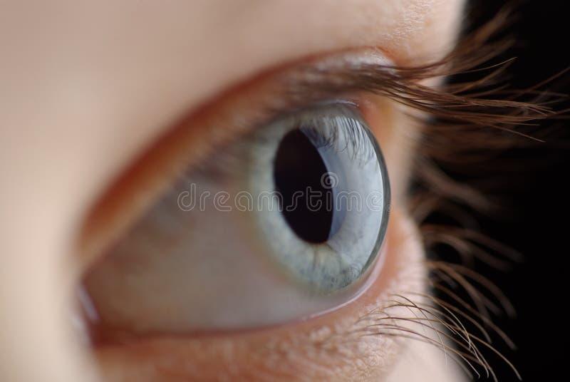 Olho humano. tiro macro? imagem de stock royalty free