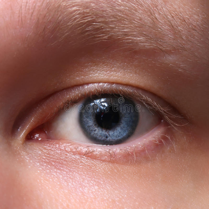 Olho masculino azul. Close up fotografia de stock royalty free