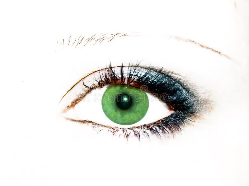 Olho verde foto de stock royalty free