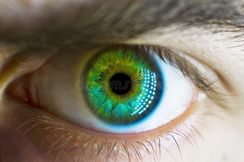 Olho verde macro do homem imagens de stock