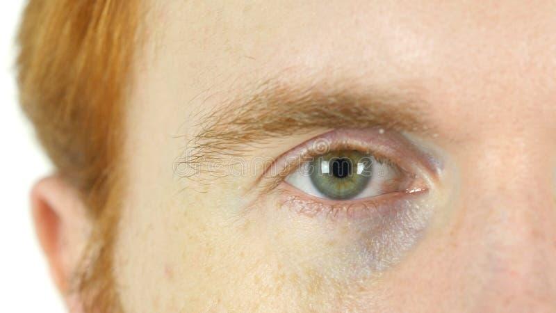 Olho verde piscar do homem vermelho da barba do cabelo, fim acima imagem de stock royalty free