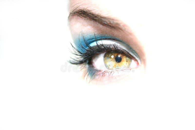 Olho verde que olha para a frente fotos de stock