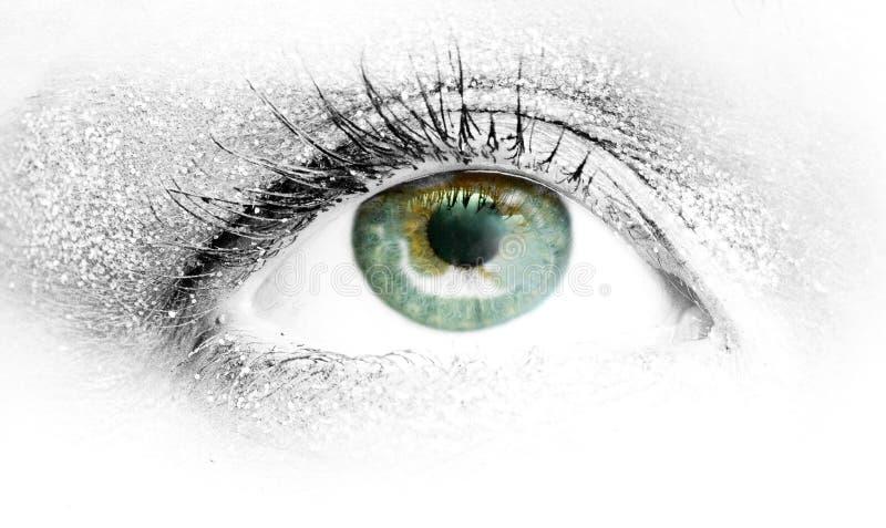 olho verde que procura o futuro fotografia de stock royalty free