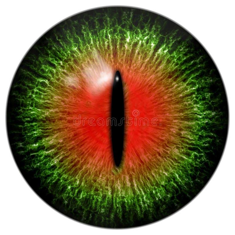 Olho vermelho verde do gato ou do réptil com aluno estreito ilustração royalty free