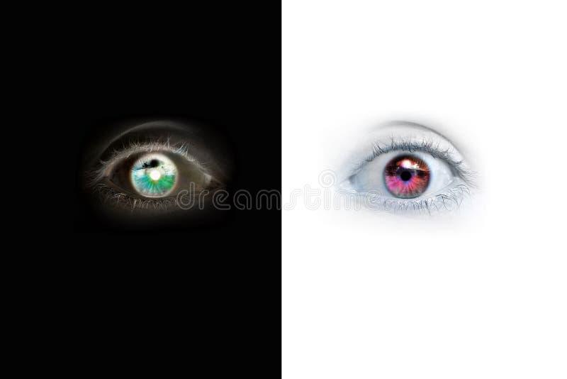 Olhos fotografia de stock
