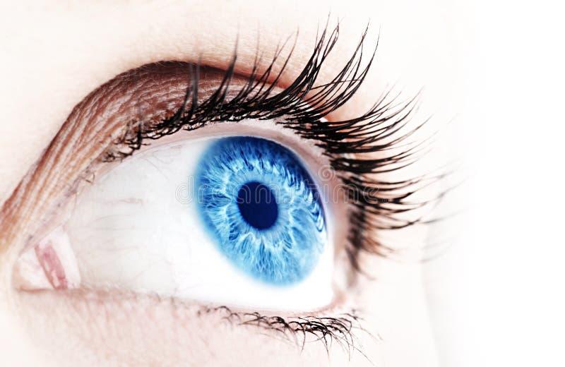 Olhos azuis abstratos imagens de stock royalty free