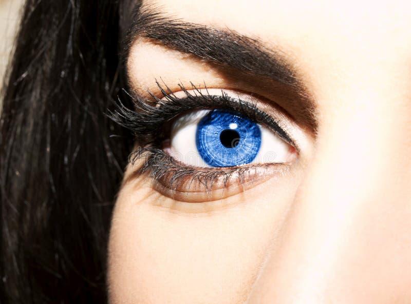 Olhos azuis da mulher com as pestanas extremamente longas imagens de stock royalty free