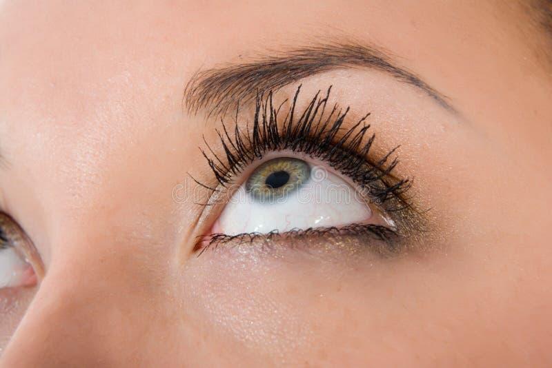 Olhos azuis no branco fotos de stock royalty free