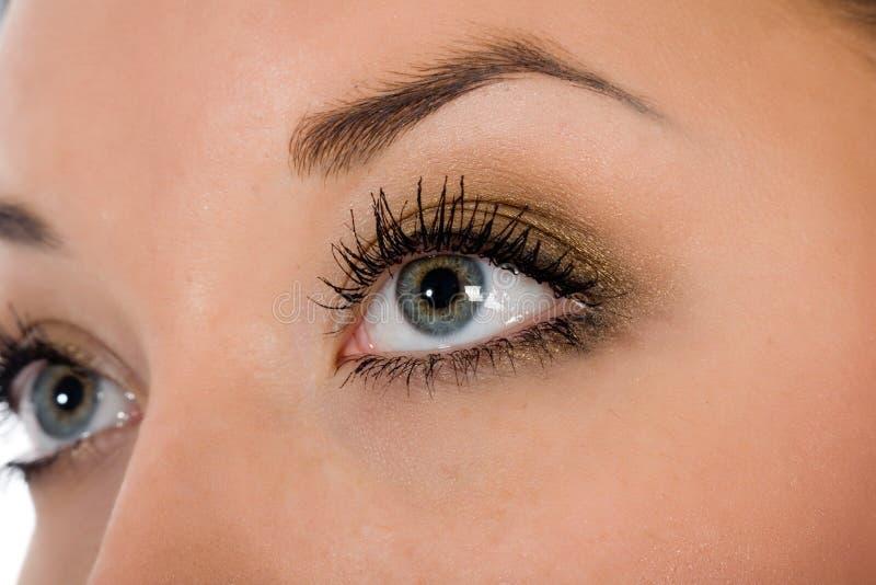 Olhos azuis no branco fotos de stock