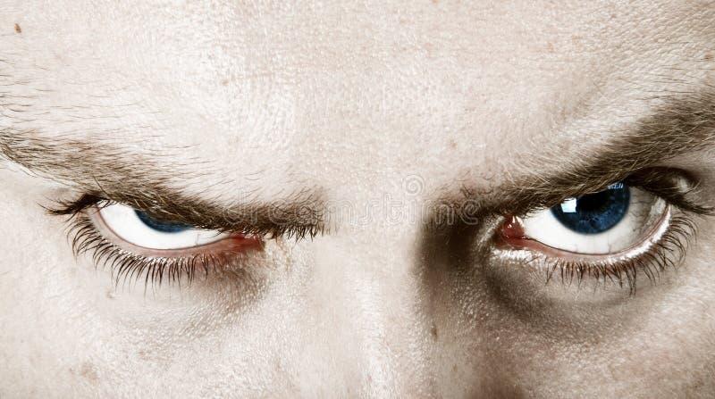 Olhos azuis olhando de sobrancelhas franzidas imagem de stock
