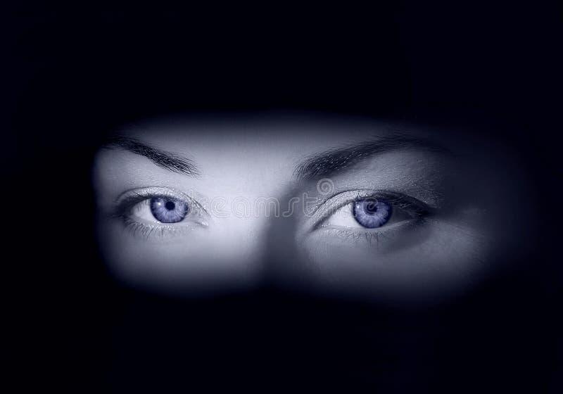 Olhos congelados fotografia de stock royalty free