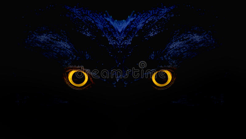 Olhos da coruja ilustração do vetor