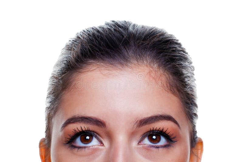 Olhos de Brown que olham acima fotografia de stock royalty free