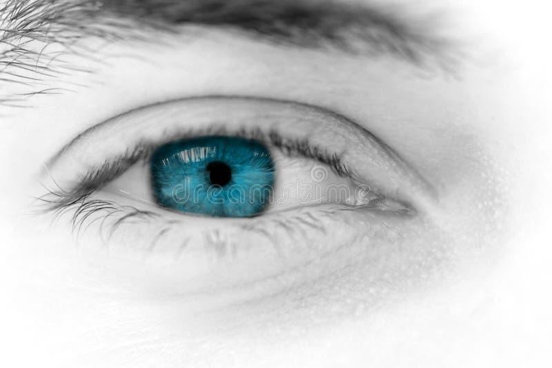 Olhos de homem novo imagem de stock royalty free