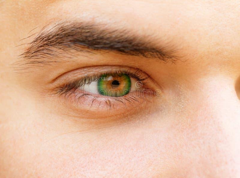 Olhos de homem novo fotografia de stock royalty free