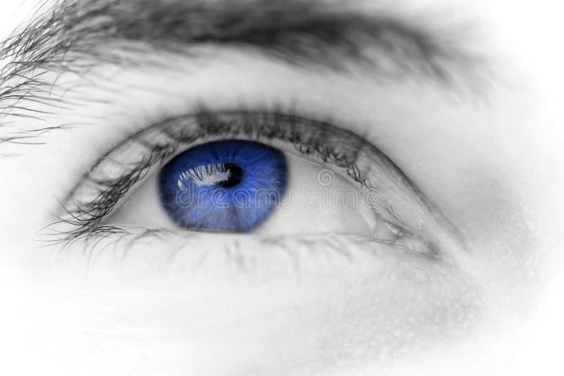 Olhos de homem novo imagem de stock