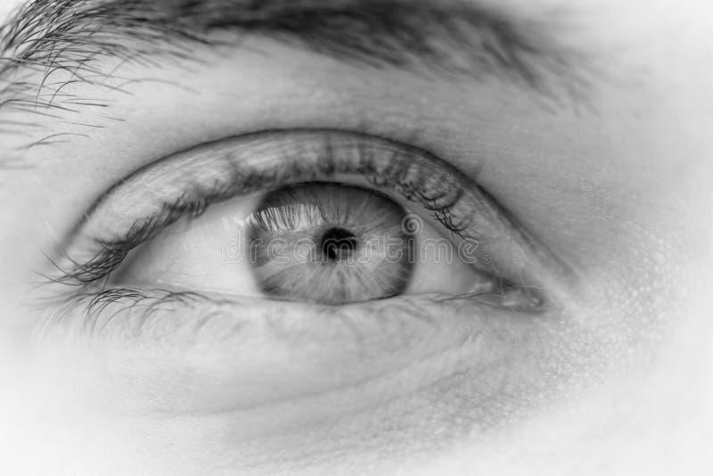 Olhos de homem novo fotografia de stock