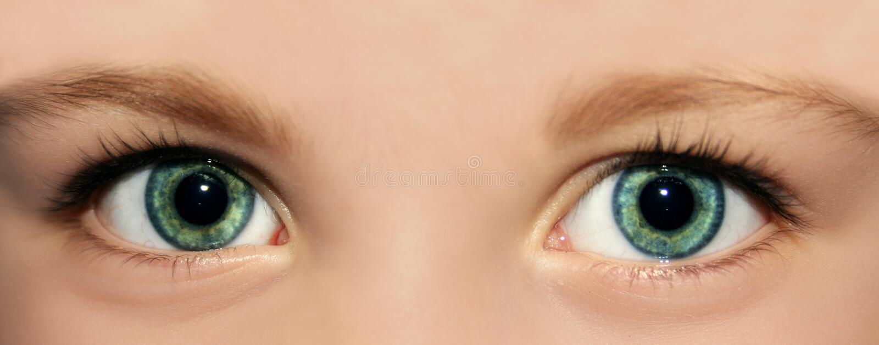 Olhos de um miúdo fotografia de stock