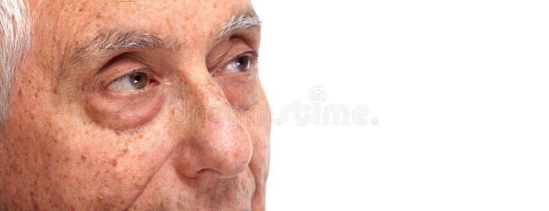 Olhos do homem superior foto de stock