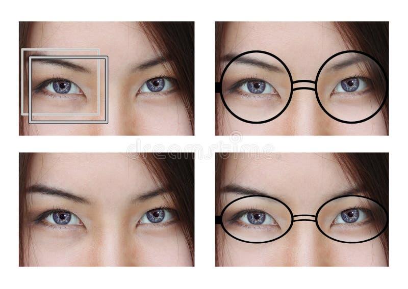 Olhos doces imagem de stock royalty free