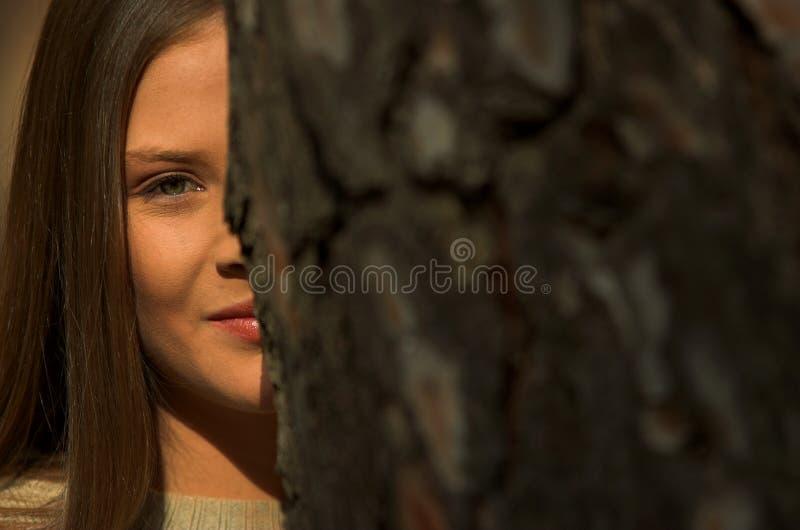 Olhos e árvore fotografia de stock