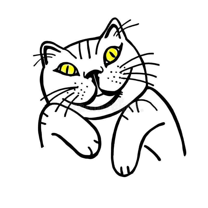 Olhos engraçados do amarelo do gato pintados fotos de stock royalty free