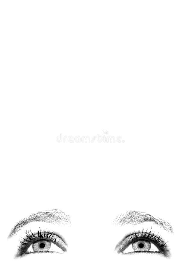 Olhos fêmeas fotografia de stock