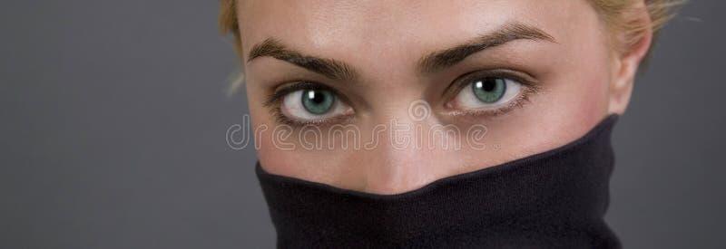 Olhos panorâmicos fotos de stock royalty free