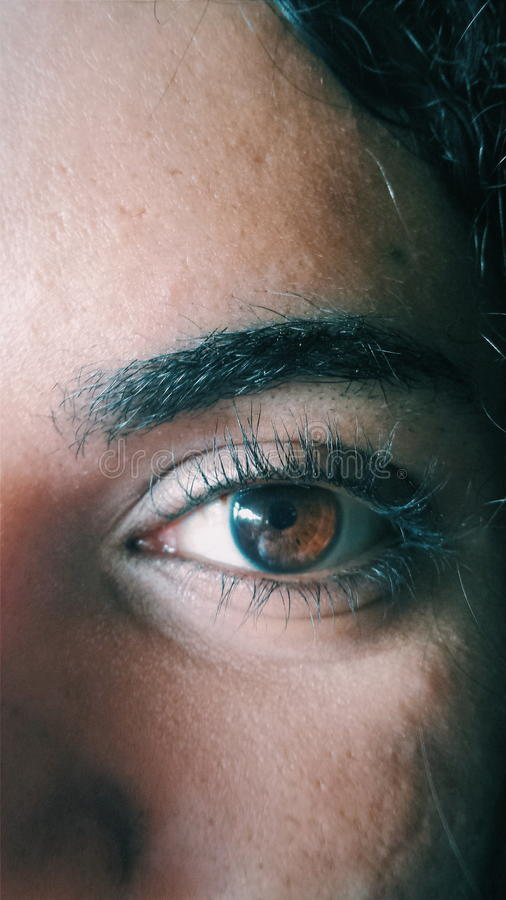 Olhos reais imagens de stock
