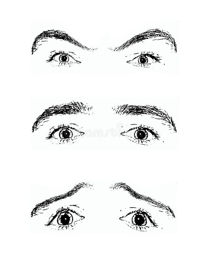 Olhos - um espelho da alma ilustração stock