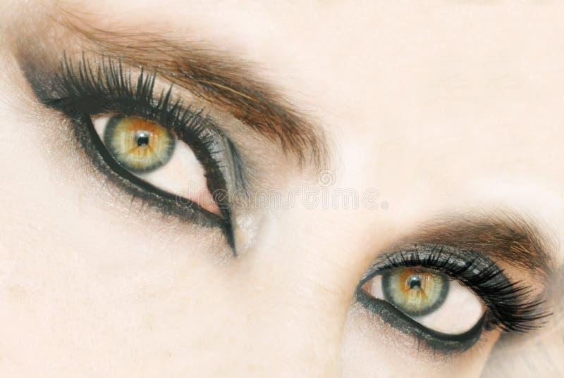 Olhos verdes imagem de stock
