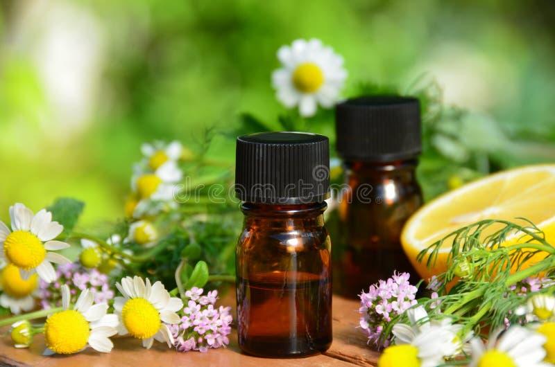 Oli essenziali con le erbe fotografia stock