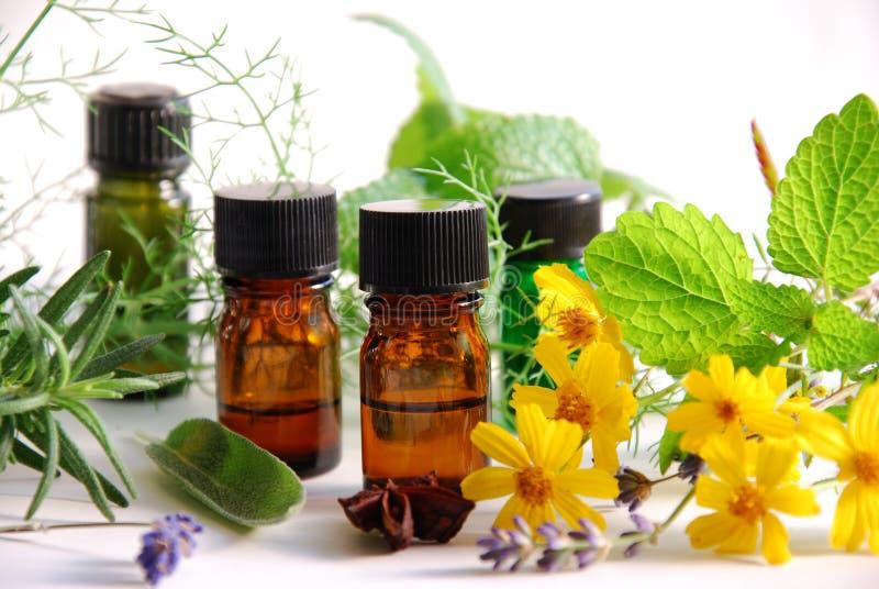 Oli essenziali con le erbe immagine stock