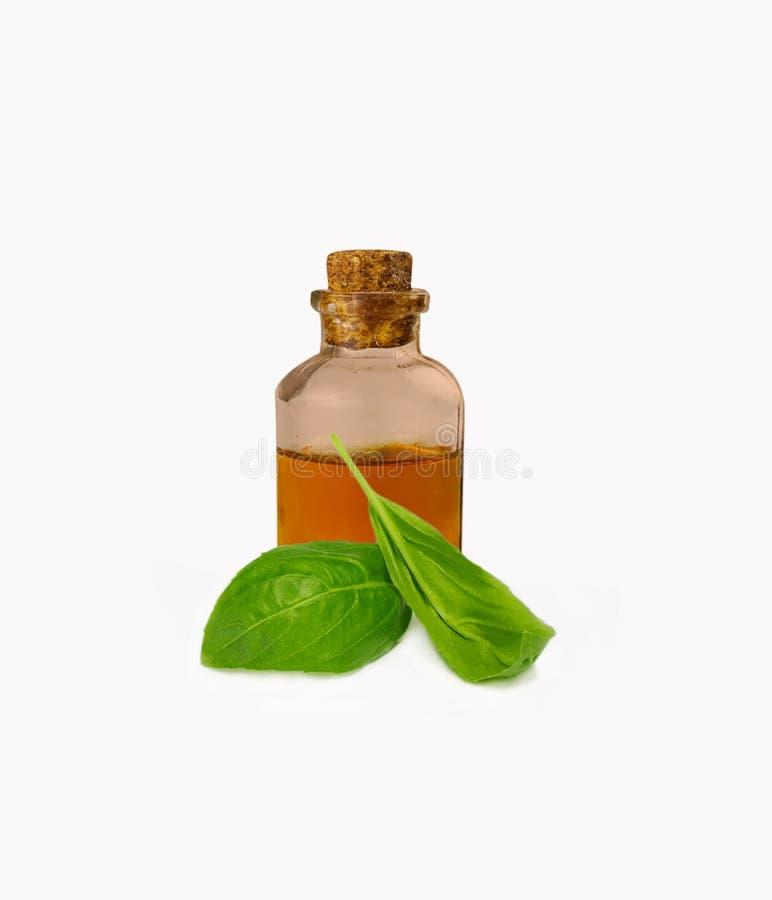 Oli essenziali del basilico in bottiglia fotografia stock libera da diritti