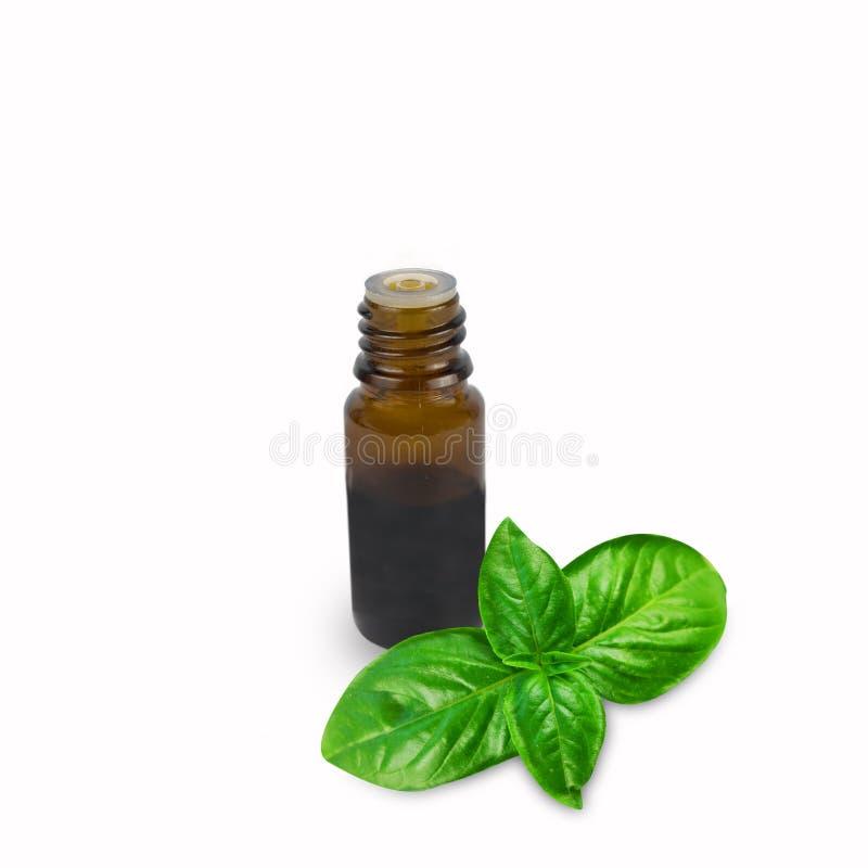 Oli essenziali del basilico in bottiglia isolata su un fondo bianco fotografie stock libere da diritti