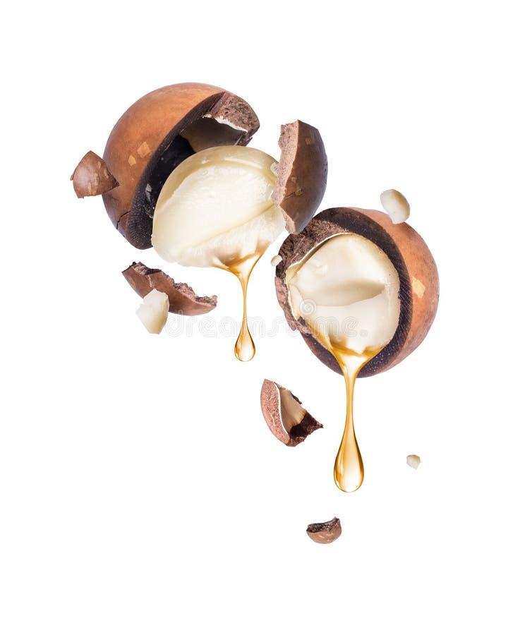 Olie die van macadamia noot op een witte achtergrond druipen stock foto's