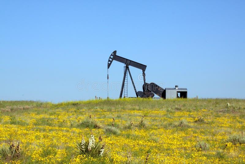 Olie Pumpjack op Prairie royalty-vrije stock foto's