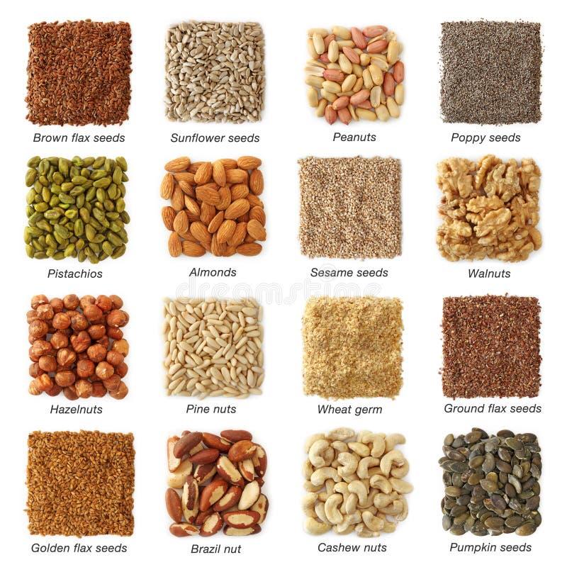 Oliehoudende zaden en noten stock afbeelding
