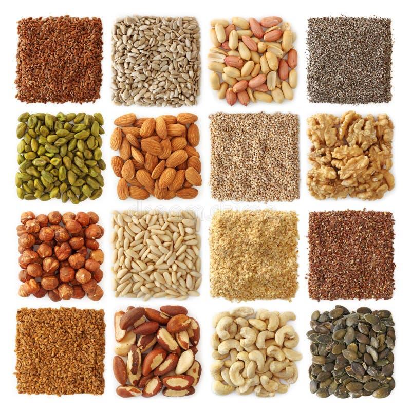Oliehoudende zaden en noteninzameling stock fotografie