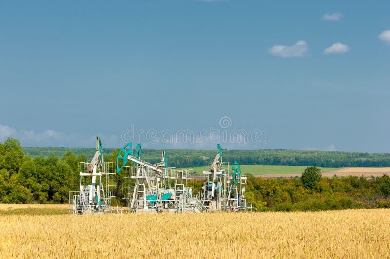 Olieschommelstoel op het gebied met tarwe wordt gezaaid die stock fotografie