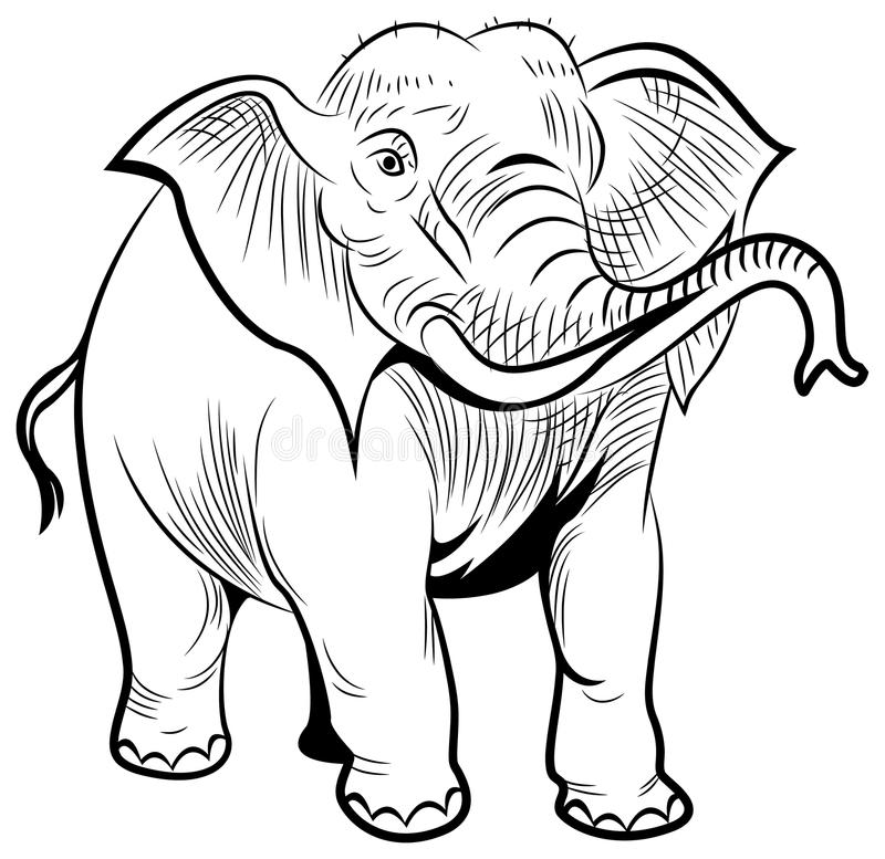Olifant vector illustratie