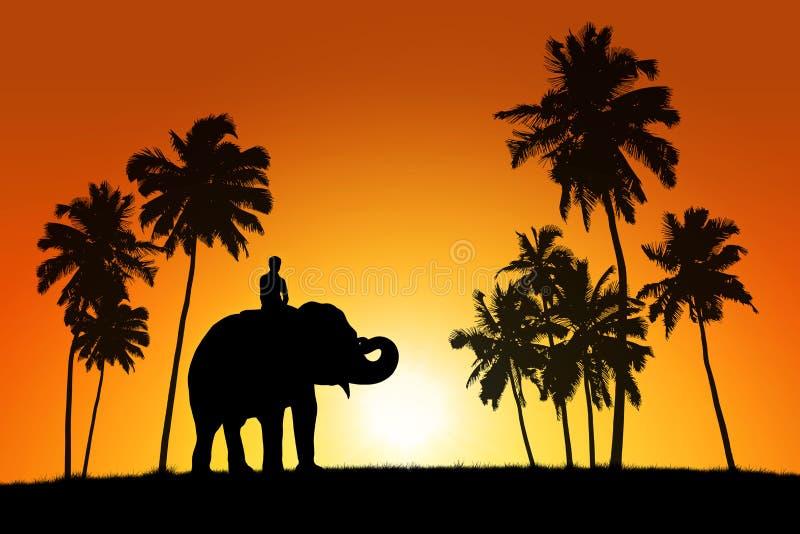Olifant en een ruiter op tropische zonsondergangachtergrond