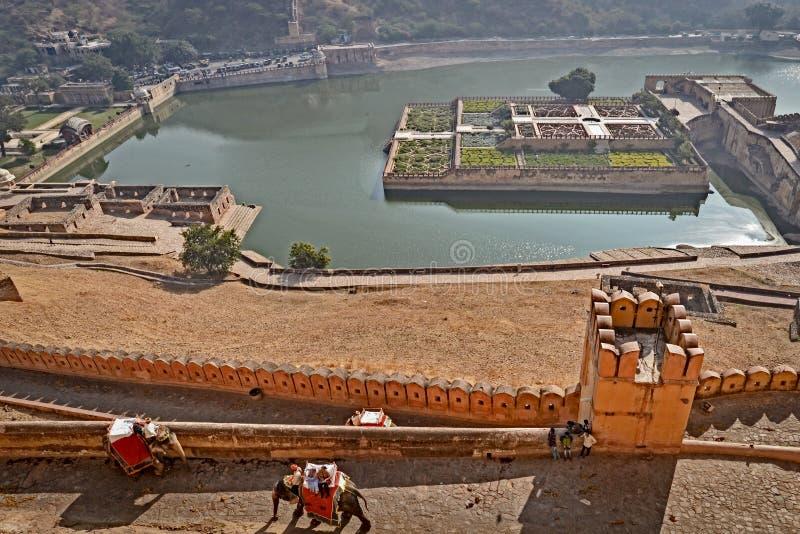 Olifanten, Amber Fort, Jaipur, Rajasthan stock afbeelding