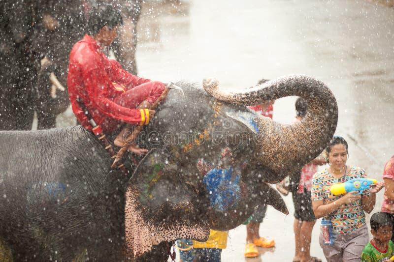 Olifanten die water in Songkran-festival in Thailand bespatten. royalty-vrije stock fotografie